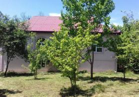 Qebelede Ev Torpaq Villa Alqi -Satqi ve Kirayesi