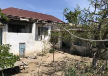 Kohne bag evi