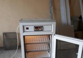 (inkubator 176)