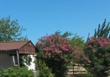 3 otaqlı bağ evi 90 kvm