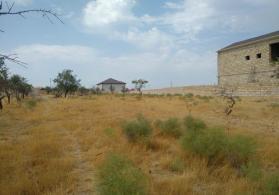 Sarayda Villa Badamin 50-100 metrliyinde 15 sot torpaq sahesi