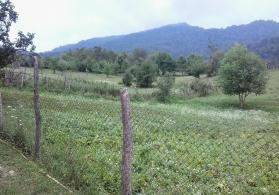 Quba rayonu, Küsnətqazma kəndi