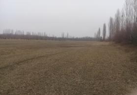 bağ yeri-Quba rayonu
