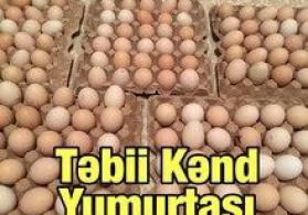 Kənd yumurtaları