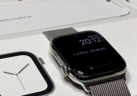 Apple Watch Series 4 Cellular 44MM Milanese Loop