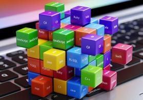Web proqramlaşdırma kursları