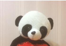 Oyuncaq panda satılır