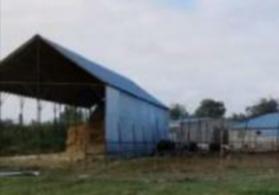 Kurdemirde TECILI ferma satilir
