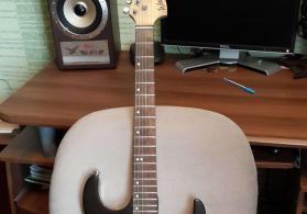 Washburn elektro gitara