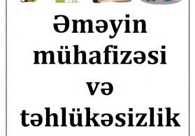 Əməyin mühafizəsi və təhlükəsizlik texnikası (Təlimat toplusu)