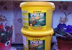 Spirulina tablet akvarium balıq yemi 50 ədəd 5azn