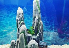 Akvarium üçün dekor satılır.