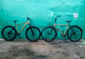 X29-X28 Golden & Black Edit