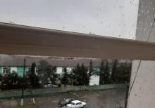 Mikrarayon, Şəhərin mərkəzi, Starvay şadlıq saryının arxası
