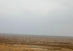 300 hektar Ərazi satılır Neftçala