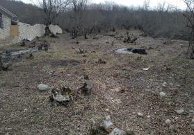 Qusar rayonu çiləgir kendi