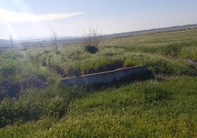 Şabran rayonunda torpaq sahəsi satılır