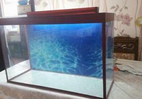 Akvarium teze 120 litrelik