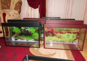 akvariumlar hazir ve sifariwde qebul olunur